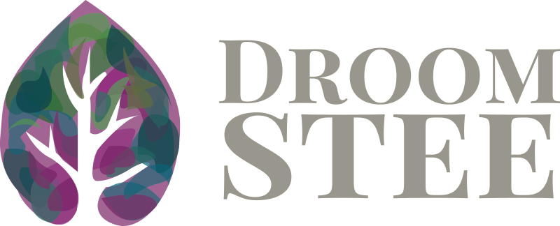 Droomstee